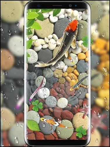 Fish Live Wallpaper Koi background Download Hindi