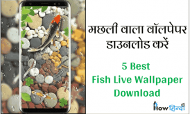मछली वाला Wallpaper Download करें |Fish Live Wallpaper